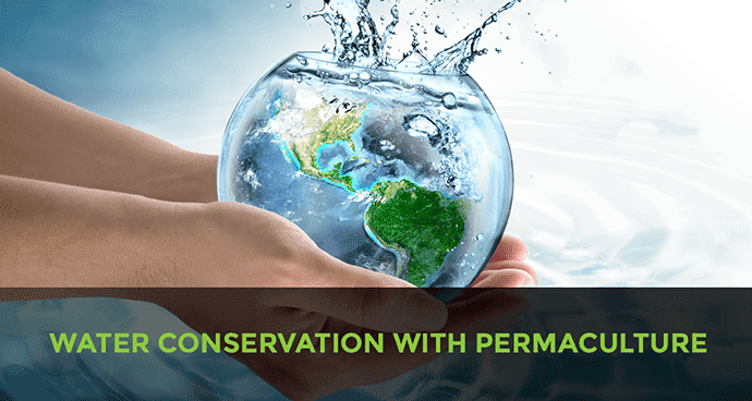 Water Conservation with Permaculture