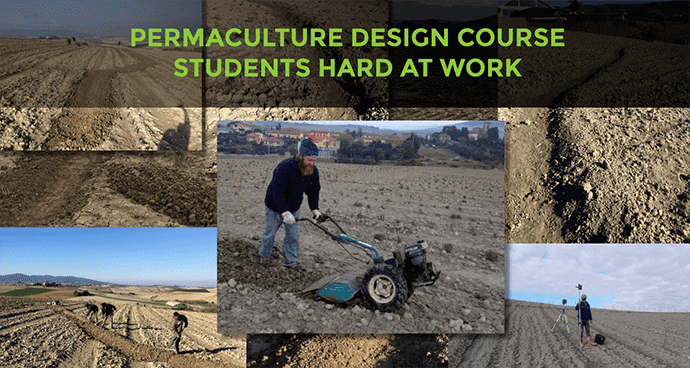 Permaculture Design Course Students