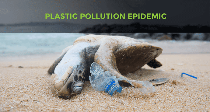 Plastic Pollution Epidemic