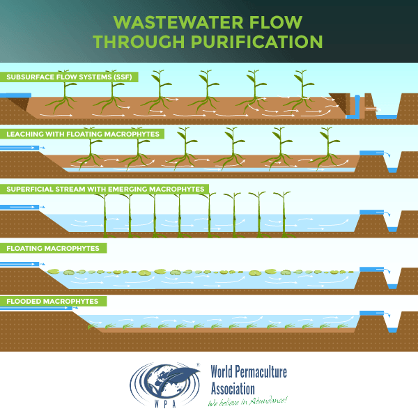 Wastewater Purification