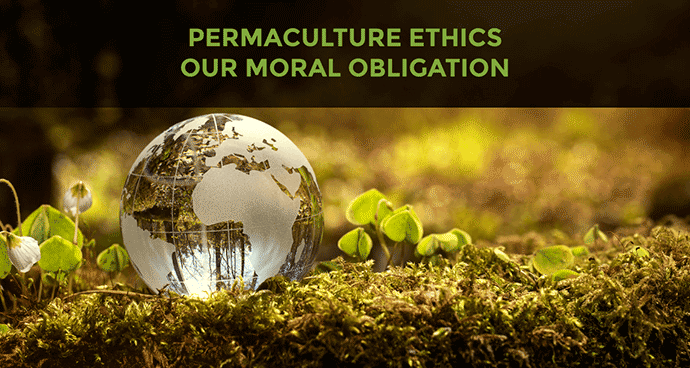 Permaculture Ethics and Our Moral Obligation