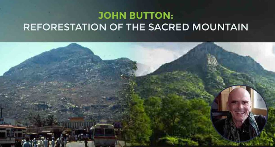 Reforestation-of-the-sacred-mountain