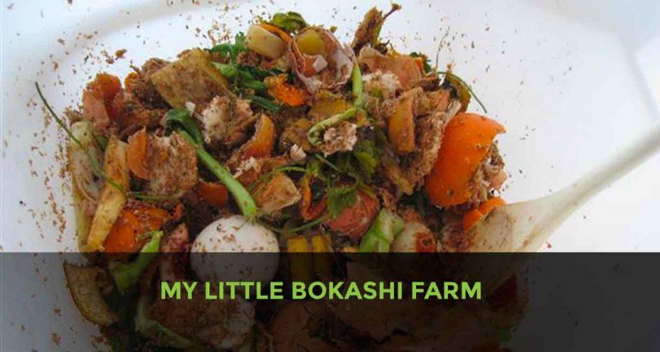 BOKASHI FARM