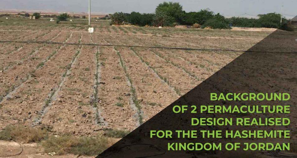 Permaculture Design in Jordan