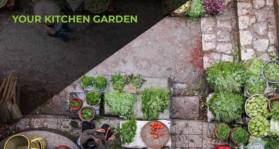 kitchen-garden