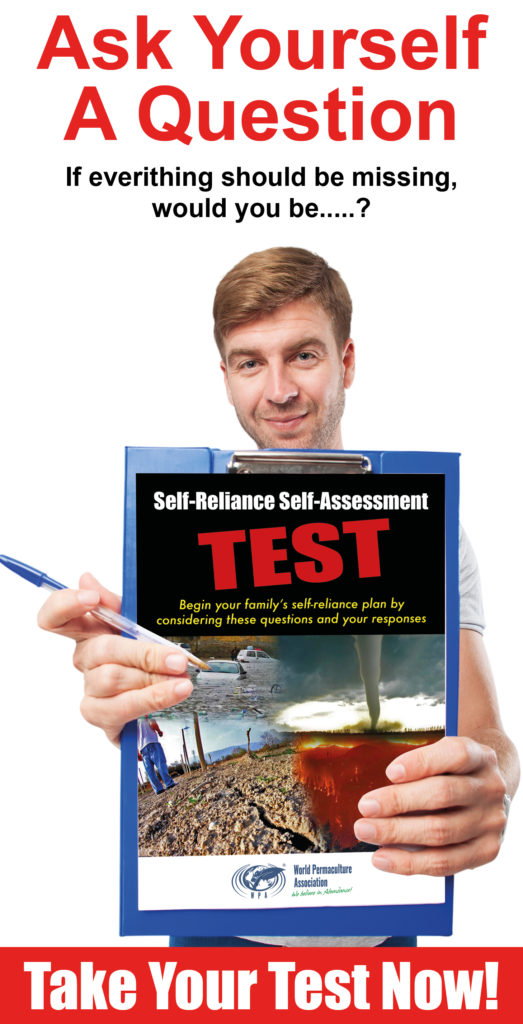 Self-reliance Self-assessment test