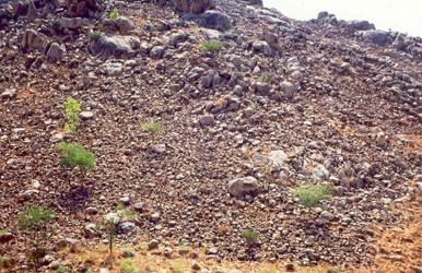 Rocky parched slopes